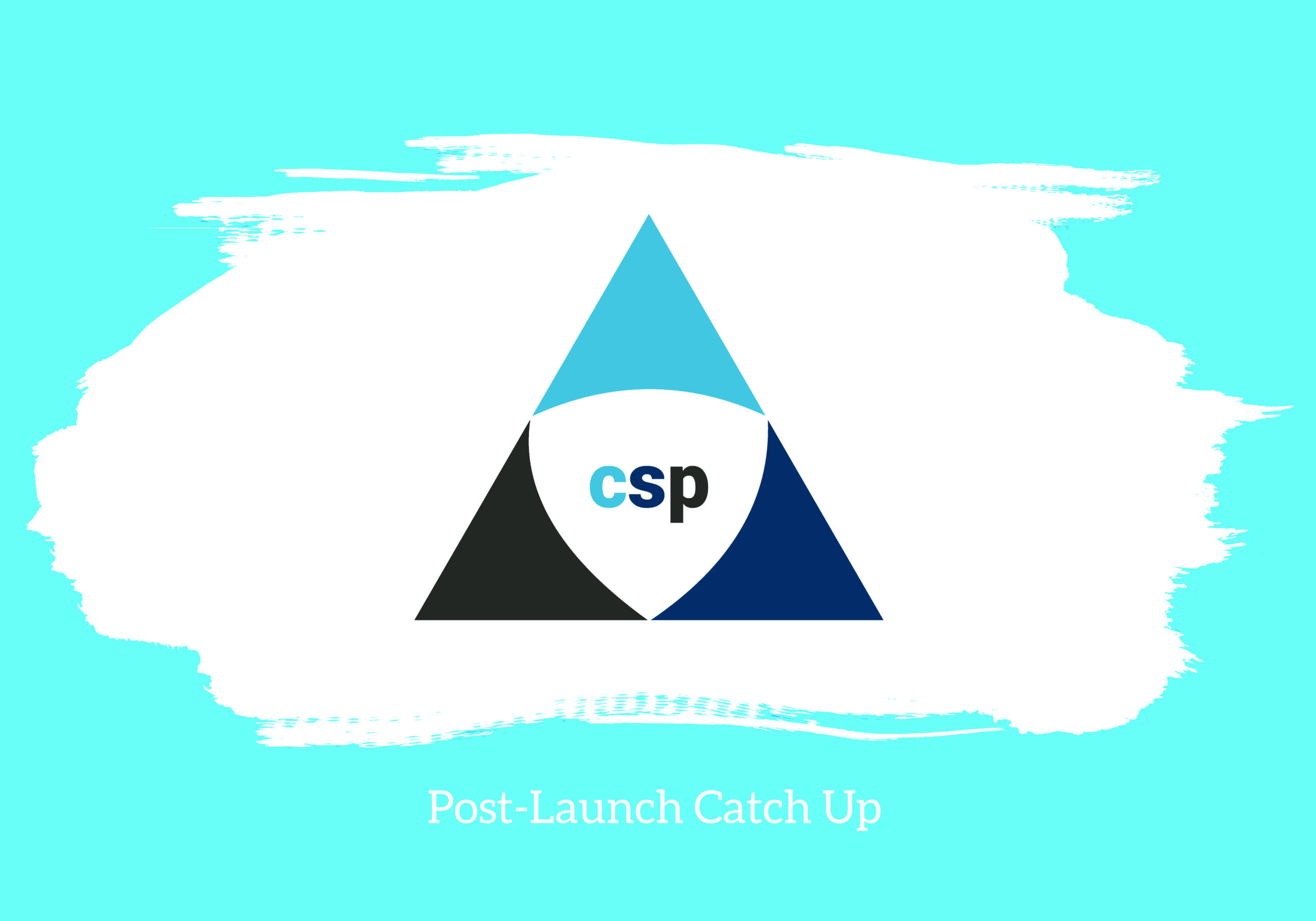 CSP Post Launch Interview